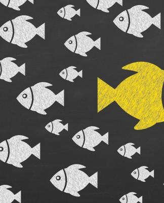 Auffallen in sozialen Netzwerken, um jeden Preis? (Foto: turgaygundogdu/ Shutterstock)