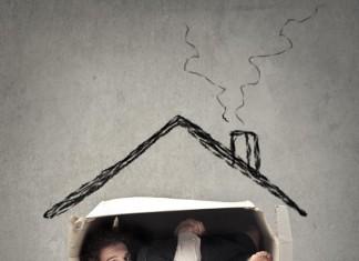 Homeoffice - so wird's (k)ein Desaster! (Foto: Ollyy/ Shutterstock)