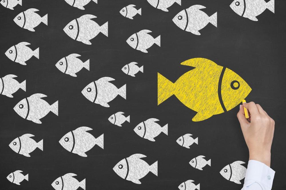 Social Media, ständig erreichbar und (fast) nie am Ziel. Mit oder gegen den Strom schwimmen? (Foto: turgaygundogdu/ Shutterstock)