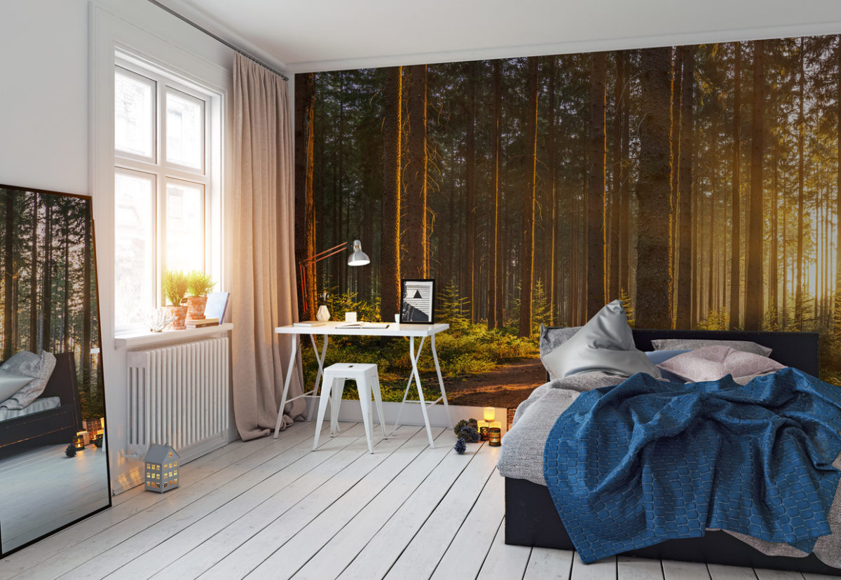 Fototapete Wald und Sonne im Home-Office (Foto: myloveview.de)